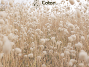 Fabricant Tote Bag En Coton.